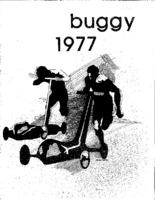 1977 buggy book