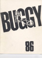 1986 buggy book