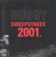 2001 buggy book