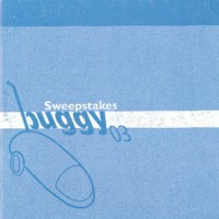 2003 buggy book
